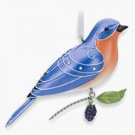 2010 Beauty of Birds #6: Eastern Bluebird